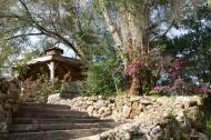 photo of steps leading to gazebo at Ravine gardens State Park, Palatka, Florida