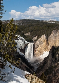 photo of Yellowstone Falls, Yellowstone National Park