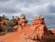 photo of Red Canyon Dixie National Forrest, Utah