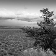 photo of Idaho Prairie