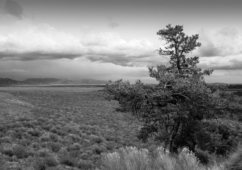 photo of Idaho Prairie