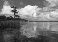 photo of Crescent lake shoreline Crescent City, Florida