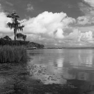 photo of Crescent lake shoreline Crescent City, Florida