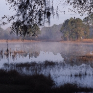 photo of Little Lake Como, FL in the early morning with mist on the lake