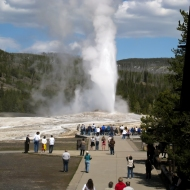 photo of Old Faithful, Yellowstone National Park