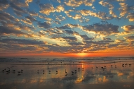 photo of Daytona Beach at sunrise