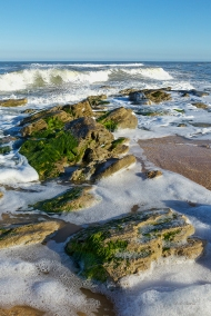 photo of rocks at Washington Oaks Beach, Washington Oaks Gardens State Park, FL