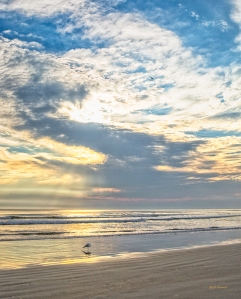 photo of Daytona Beach in morning light