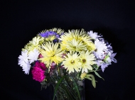 Photo of Flowers light painted with a Flashlight