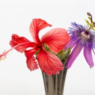 Photo of Hibiscus and Passion Flower in a Vase