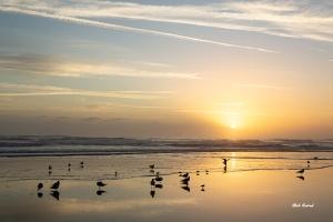 Photo of Ormond Beach Sunrise
