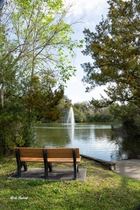 photo of Ormond Beach Central Park Bench
