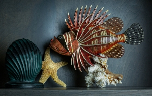 photo of Lionfish still life